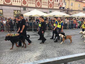 Velika gasilska parada v počastitev 17. kongresa Gasilske zveze Slovenije 7